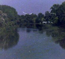 The River Of Dreams Sticker