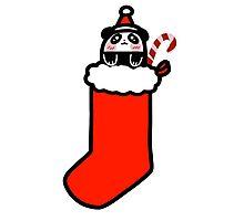 Christmas Stocking Panda Photographic Print