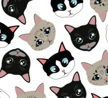 Cats Everywhere  Sticker