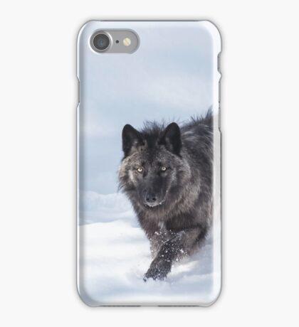 Black Wolf iPhone Case/Skin