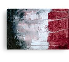 Shadow Flag Canvas Print