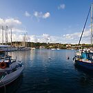 Boats in Fiskardo Bay by Melanie Simmonds