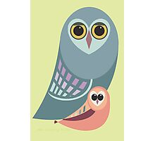 BIG OWL & ITTY BITTY OWL Photographic Print