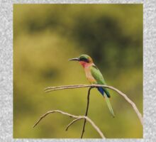 Red-throated Bee-eater with green background One Piece - Short Sleeve