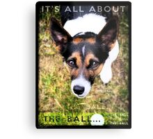 Terrier Obsession: It's All About The Ball Metal Print