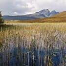 Blaven and the Reeds of Loch Cill Chriosd by derekbeattie