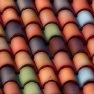 Beautiful Tiles by ronsphotos