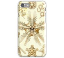 T10 - Ophiotrix iPhone Case/Skin