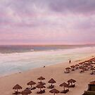 In the Pink In Mexico by Vickie Emms