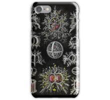 Stepoidea Radolarian iPhone Case/Skin