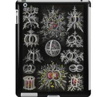 Stepoidea Radolarian iPad Case/Skin