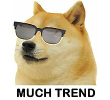 MUCH TREND Doge  Photographic Print