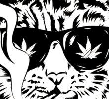 Smoke Meowt Sticker