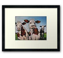 Til the cows come home.... Framed Print