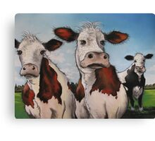 Til the cows come home.... Canvas Print