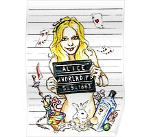 Alice in PD 5-9-1863 Poster