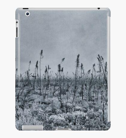 Burned iPad Case/Skin
