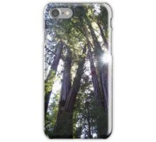 Henry Cowell Redwoods 03.05.2015 836 iPhone Case/Skin