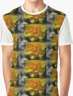 Beautiful spring yellow flower close up photo art. Graphic T-Shirt