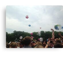 Firefly Festival Canvas Print
