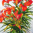 Tigerlily by marlene veronique holdsworth