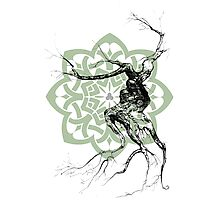 Celtic world tree ink drawing Photographic Print