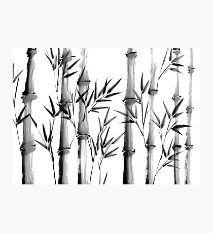 Black and white bamboo forest Photographic Print