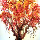 Autumn Jewels by Linda Callaghan