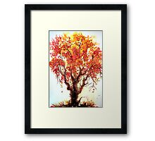 Autumn Jewels Framed Print