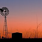 Oakey Sunset  - Qld Australia by Beth  Wode