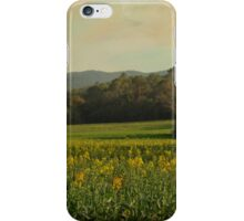 Once Upon a Time a Field of Flowers iPhone Case/Skin