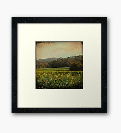 Once Upon a Time a Field of Flowers Framed Print