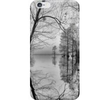 Winter gateway at the Dismal Swamp iPhone Case/Skin