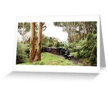 Through The Ferns - Menzies Creek  Greeting Card