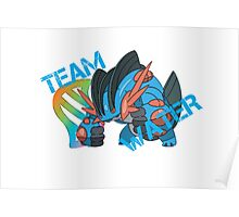 Pokemon - Team Water - Swampert Poster