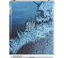 winter forest - frost serie iPad Case/Skin