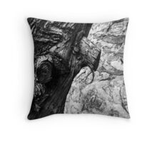 Wood v Stone Throw Pillow