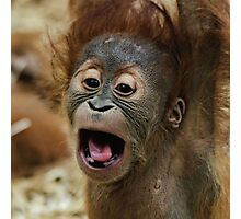 Lovely Orang Baby Photographic Print