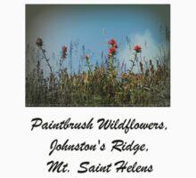 paintbrush wildflowers, Johnston's Ridge One Piece - Short Sleeve