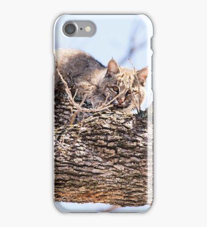 Morning Bobcat iPhone Case/Skin