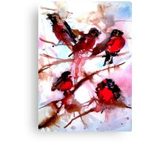 Baby Robins Canvas Print