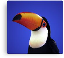 Toco Toucan Canvas Print