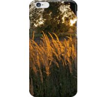 First rays - Pruchna, Poland iPhone Case/Skin