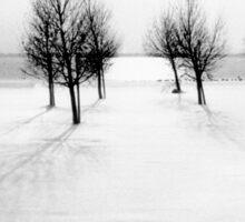 Landscape in snow Sticker