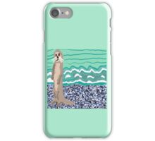 Lovely Little Sea Otter On The Beach iPhone Case/Skin
