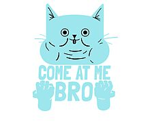 Cat Kitten Come At Me Bro Photographic Print