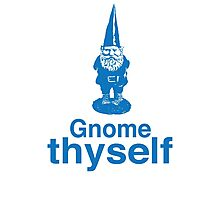 Gnome Thyself Photographic Print