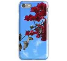 Red Blossoms Blue Sky iPhone Case/Skin