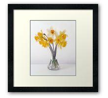 Still LIfe Daffodils in Glass Bell Vase Framed Print