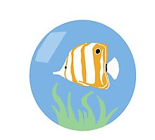 Butterfly Fish  Photographic Print